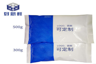 China Customized Color / Logo Cold Chain Packaging NY/PE Frozen Packs For Meat Delivery distributor